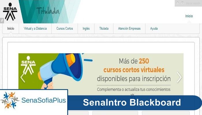 SenaIntro Blackboard